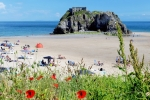 St Catherines Island Tenby poppies copy